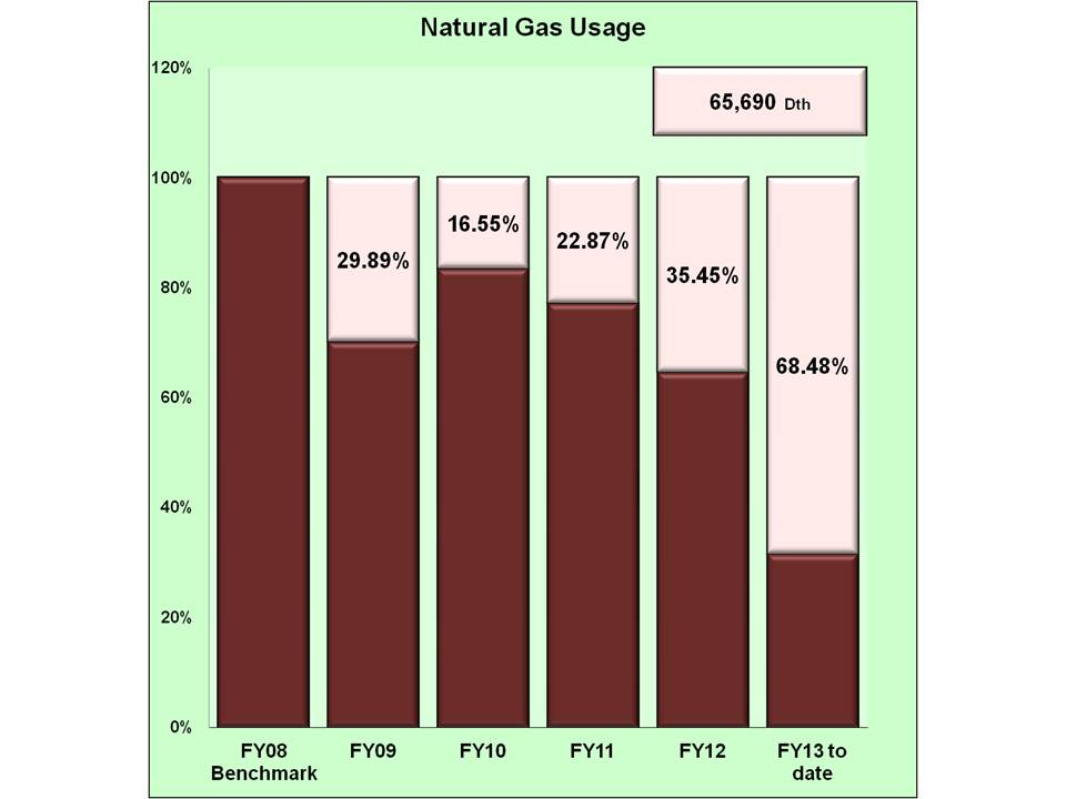 Natural Gas usage 1st quarter Fiscal Year 2013